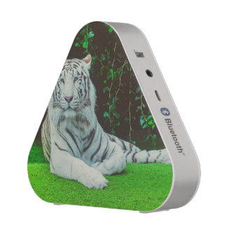 White bengal tiger bluetooth speaker