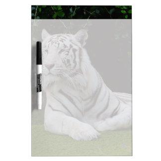 White Bengal Tiger Dry-Erase Board
