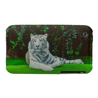 White bengal tiger iPhone 3 case