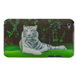 White bengal tiger iPod touch case