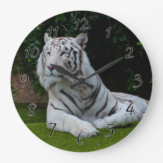 White Bengal Tiger Large Clock