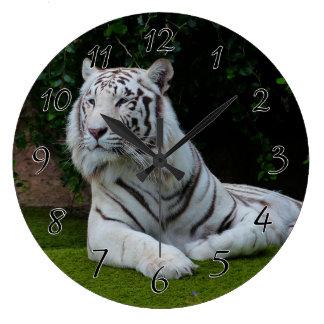 White Bengal Tiger Large Clock
