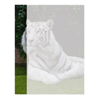 White Bengal Tiger Letterhead Template