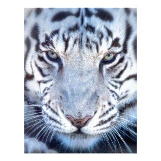 White Bengal Tiger Letterhead