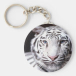 White Bengal Tiger Photography Basic Round Button Keychain