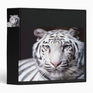 White Bengal Tiger Photography Vinyl Binders