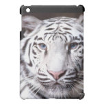 White Bengal Tiger Photography Cover For The iPad Mini
