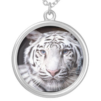 White Bengal Tiger Photography Silver Plated Necklace