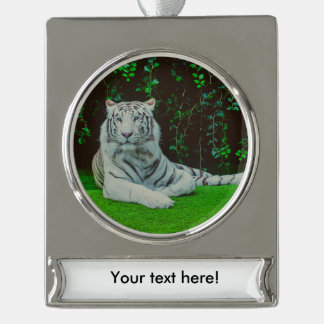 White bengal tiger silver plated banner ornament
