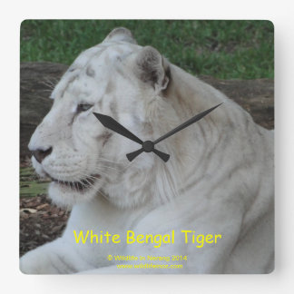 White Bengal Tiger Square Wall Clock