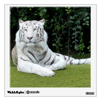 white bengal tiger wall decal