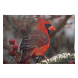 White Berries Primitive Christmas Red Cardinal Cloth Placemat