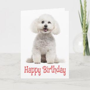 White Bichon Frise Puppy Dog Red Happy Birthday Card
