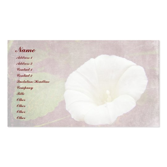 White Bindweed - The Wild Perennial Morning Glory Business Card