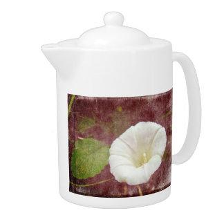 White Bindweed - The Wild Perennial Morning Glory Teapot