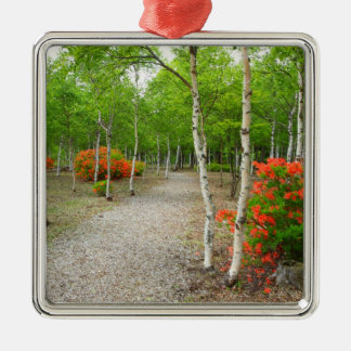 White birch and azalea bloom metal ornament