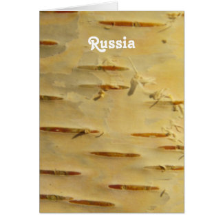 White Birch Stationery Note Card