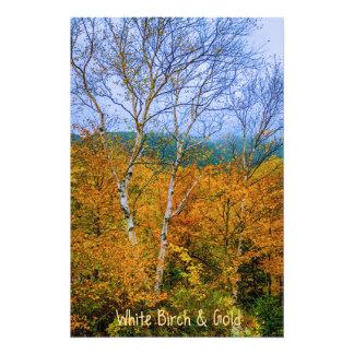 White Birch & Gold Art Photo