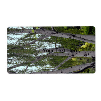 White Birch in Enchanted Lush Forest Label