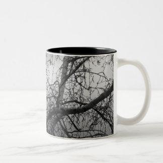 White Birch Mug