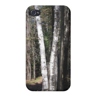 White Birch Tree iPhone Case Cover For iPhone 4