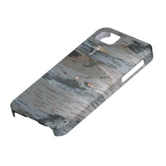 White Birch Tree Nature Phone Case iPhone 5 Covers