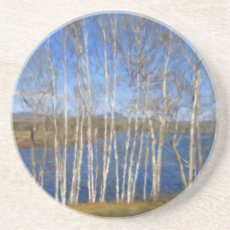 White Birch Trees in Searsport Maine Coaster