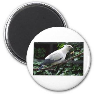 White Bird 2 Inch Round Magnet