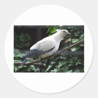 White Bird Classic Round Sticker