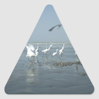 White birds featehres hakuna matata.JPG Triangle Sticker