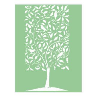 White Birds in Tree Post Card