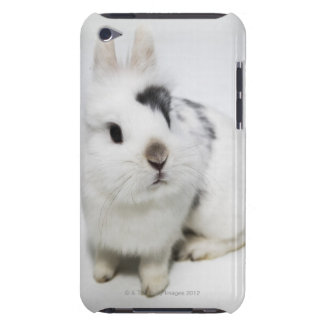 White, black and brown rabbit Case-Mate iPod touch case