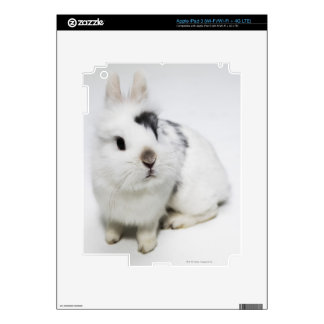 White, black and brown rabbit skins for iPad 3