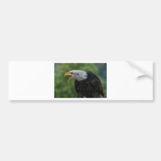 White Black Eagle during Daytime Bumper Sticker