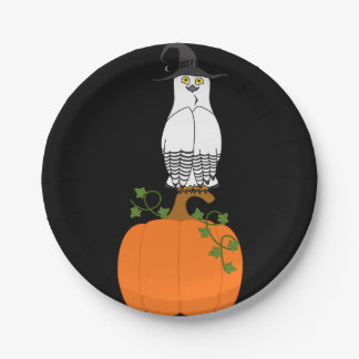 White & Black Owl with Halloween Pumpkin 7 Inch Paper Plate