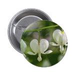 White Bleeding Hearts Flowers Pinback Button