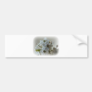 White blooms.jpg bumper sticker