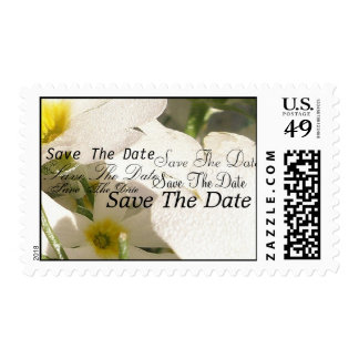 White Blooms Postage Stamps