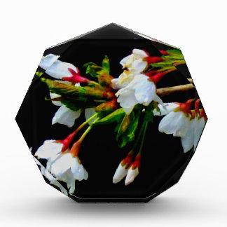 White blossom award