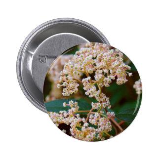 White blossom pin