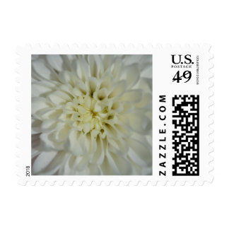 White Blossom Customizable Postage