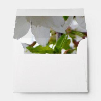 White Blossom Envelope