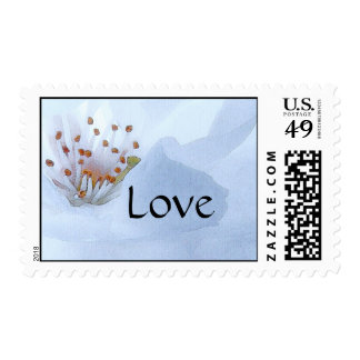 White Blossom Flowers Floral Love Postage