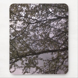 White Blossom Mouse Pad
