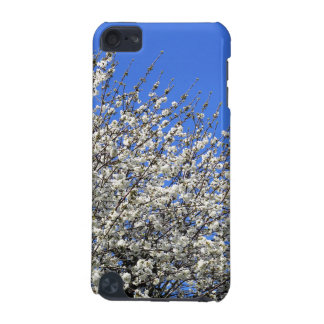 White blossom on a tree iPod touch 5G case