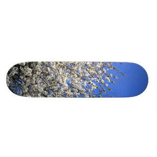 White Blossom Skate Board Deck