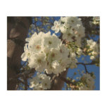 White Blossoms I Spring Floral Wood Wall Decor