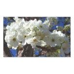 White Blossoms II Spring Flowering Tree Rectangular Sticker
