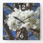 White Blossoms II Spring Flowering Tree Square Wall Clock