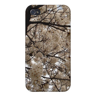 White Blossoms iPhone 4 Cases